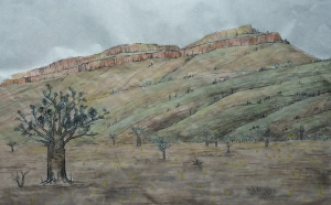 Boab trees and rusty termite mounds at the foot of Cockburn Range, Kimberley, WA (2015), 20 x 28 cm, ink & watercolour on paper