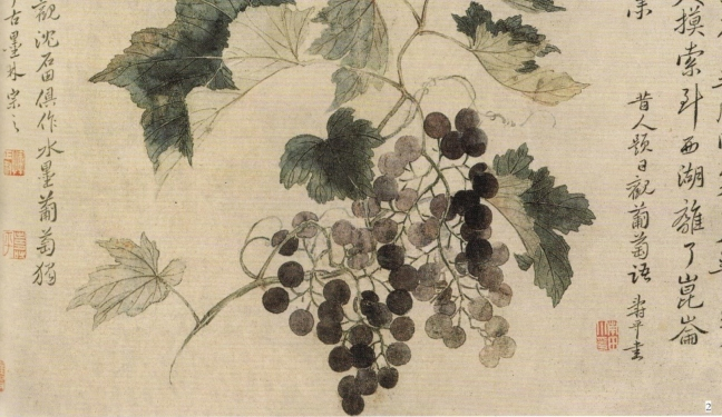 Yun Shouping 惲壽平 (Yun Nantian) (1633 – 1690), Grapes, ink and watercolour on paper