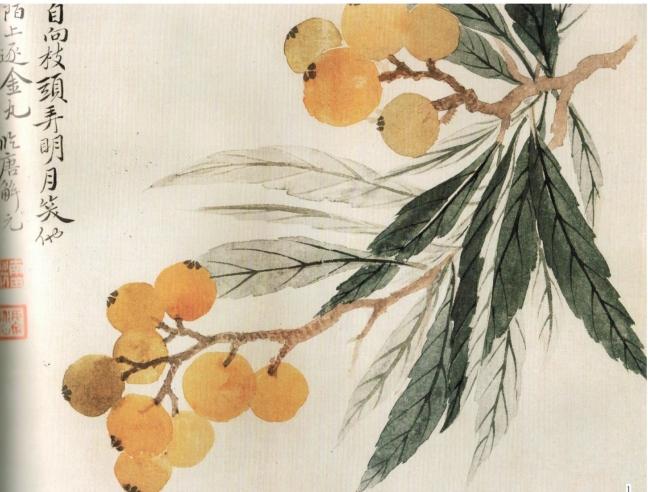 Yun Shouping 惲壽平 (Yun Nantian) (1633 – 1690), Loquat fruits (琵琶果)