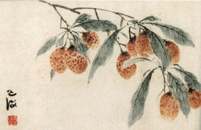 Chen Chun 陳淳 (1483 – 1544) Lychee, ink and watercolour on paper