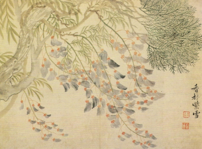 Yùn Nántián (惲南田) (1633-1690)Wisteria flowers, ink and Chinese watercolour on paper