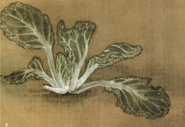 Anonymous, Bok choy, ink and watercolour on silk