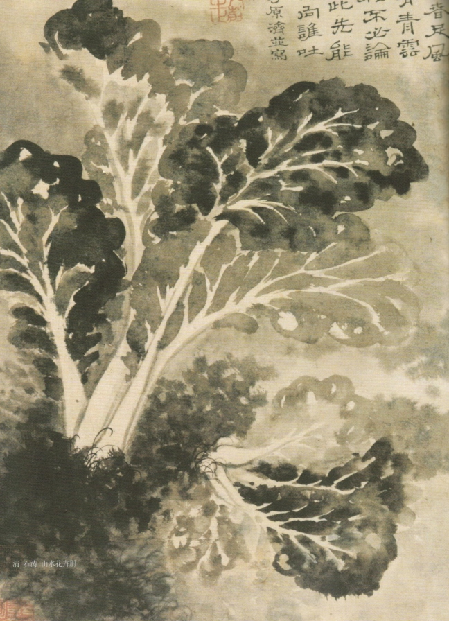 Shitao 石濤 (1642 – 1707), Bok choy, ink on paper