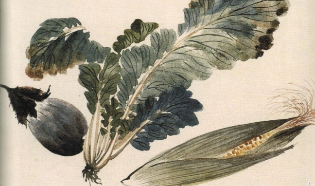 Zhāng Dà zhuàng 張大壯 (1903 – 1980), Pok choy, Egg plant and Corn on a Cob, ink and watercolour on paper