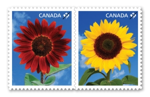 2011_sunflowers_stamps