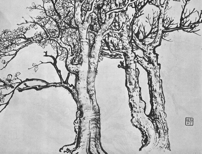 Li Xiongcai (黎雄才) (1910 - 2001), A sketch of old tree trunks (probably banyan trees), ink on paper. Image taken from Li Xiongcai's Landscape Painting Manual (1981)