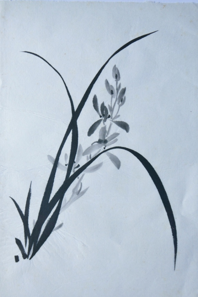 Patrick Siu (蕭燿漢) (2015) Chinese orchid, ink on paper, 33x 23 cm