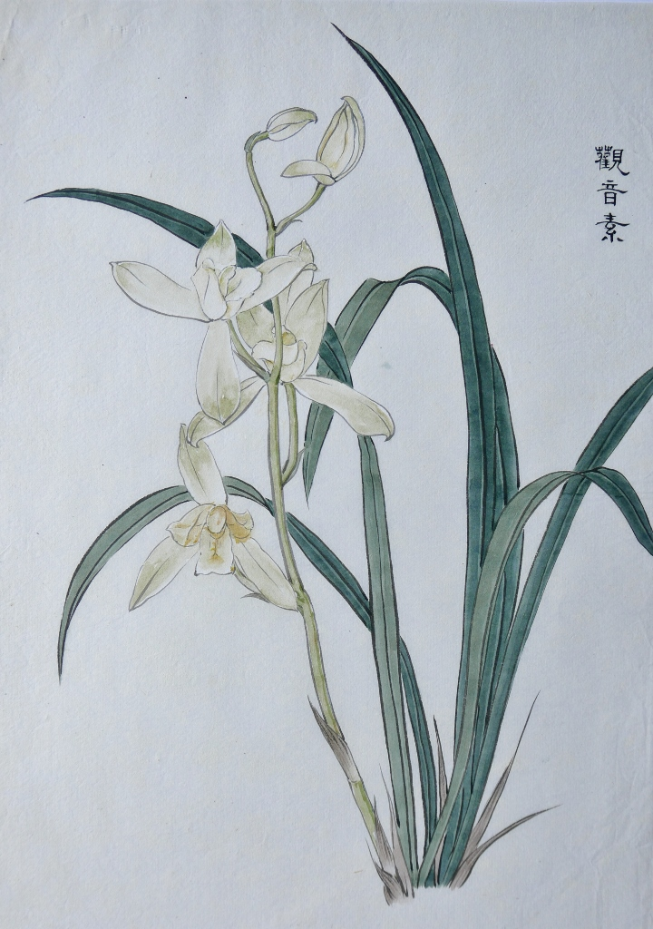 Chinese Orchid Painting Patrick Siu Chinese Calligraphy